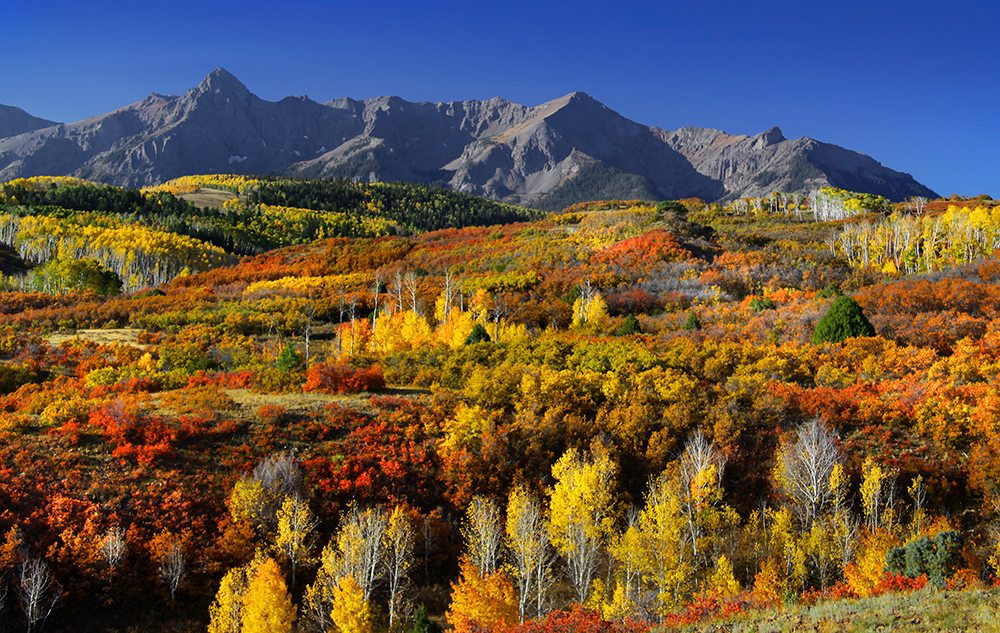 Best places to see fall color in colorado sciox Choice Image