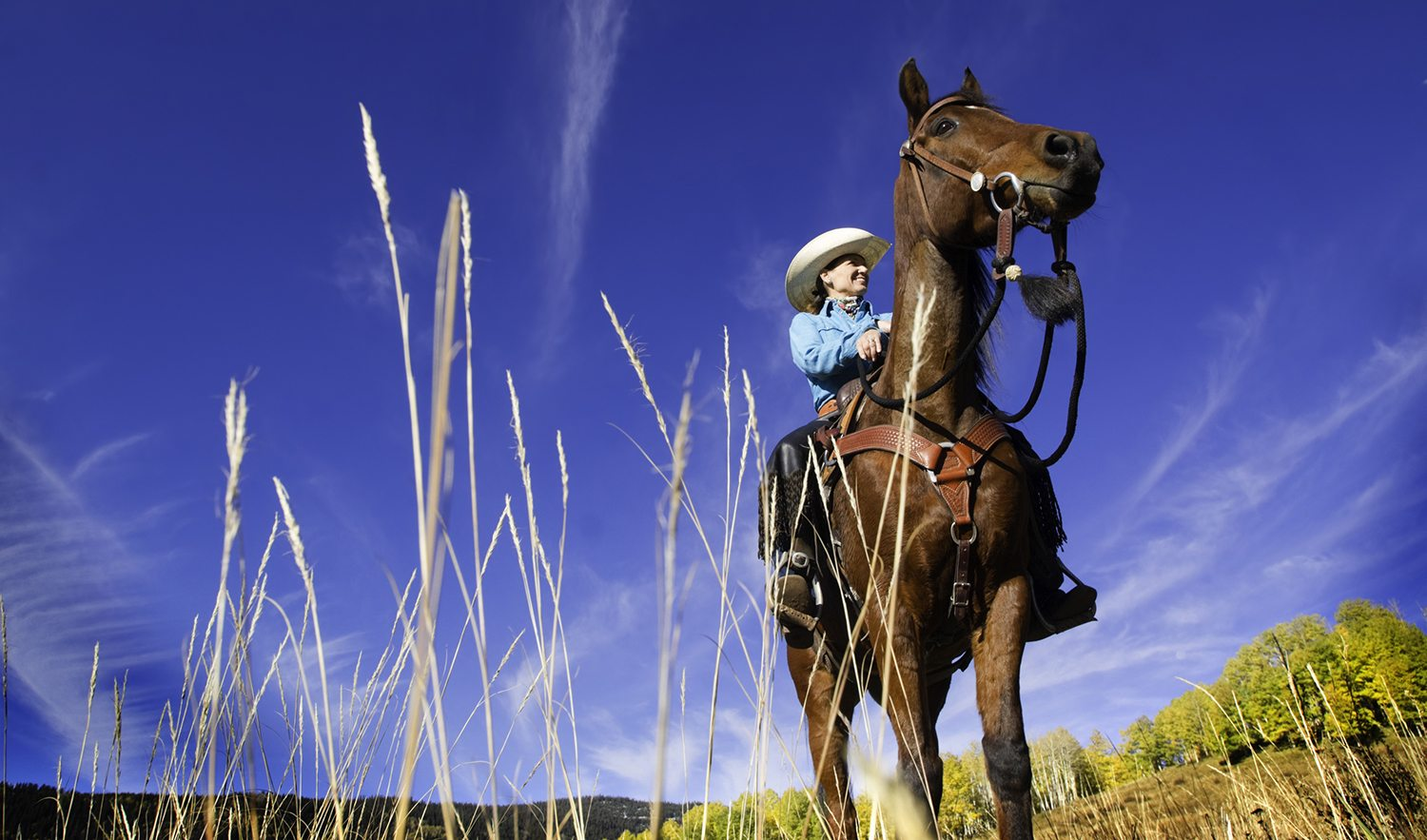 Saddle Up: Colorado's Best Vacation Ranches