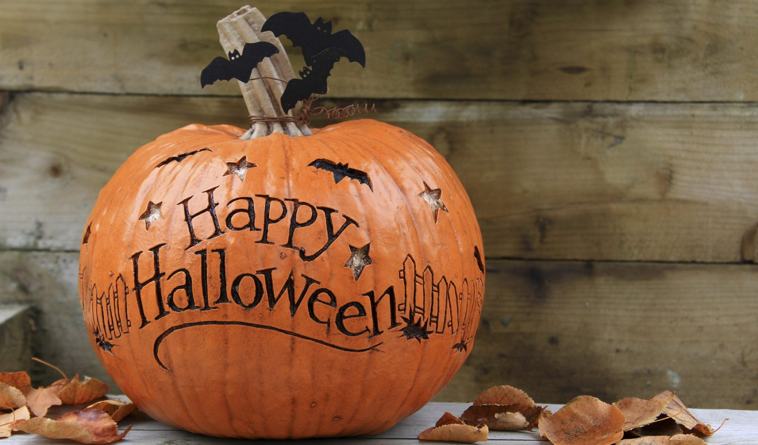 Don't Make Your Pumpkins Go Under the Knife! Easy No-Carve Pumpkin Ideas for Halloween