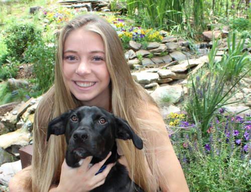Coldwell Banker Brokers Support Douglas County Canine Rescue