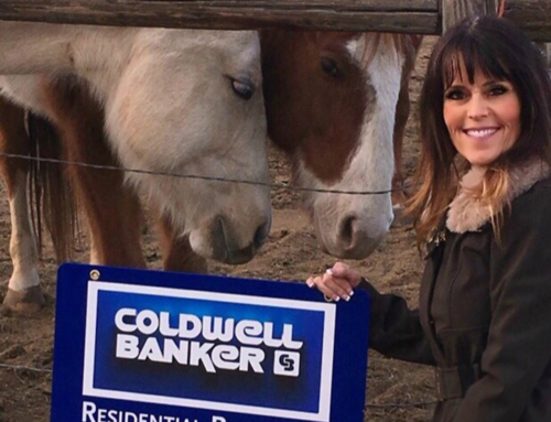 Local Coldwell Banker Affiliated Agent Sheree Cooke has a Big Heart for Horses